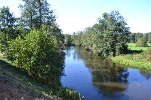 Plaukimas baidarėmis Merkio upe