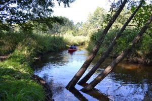 Plaukimas baidarėmis Varėnės upe